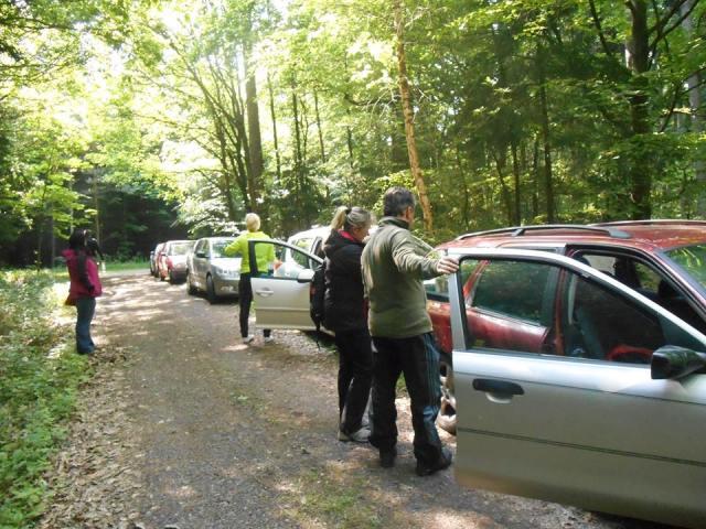 V lese bylo živo (ale měli jsme všechna povolní, od lesáků i od police...)