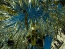 Náhledový obrázek k článku HOST DEDENÍKU – Topi Pigula: Taorminské třepotání